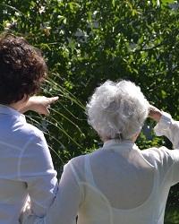 hebergement-temporaire-residence-seniors
