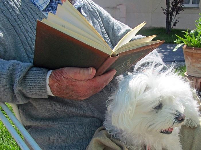 Animal de compagnie pour personne âgée